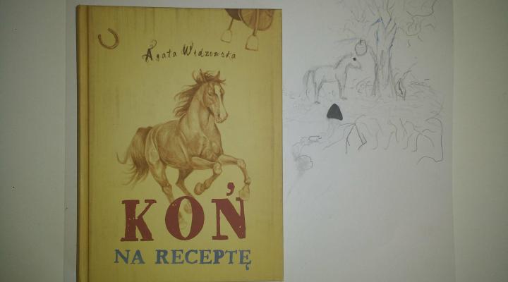 """Dzieciom na dobranoc – """"Koń na receptę"""", Agata Widzowska; Wydawnictwo Dreams"""