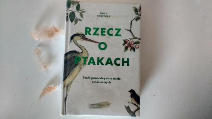"""Na dobranoc – """"Rzecz o ptakach"""", Noah Strycker; Wydawnictwo Muza"""