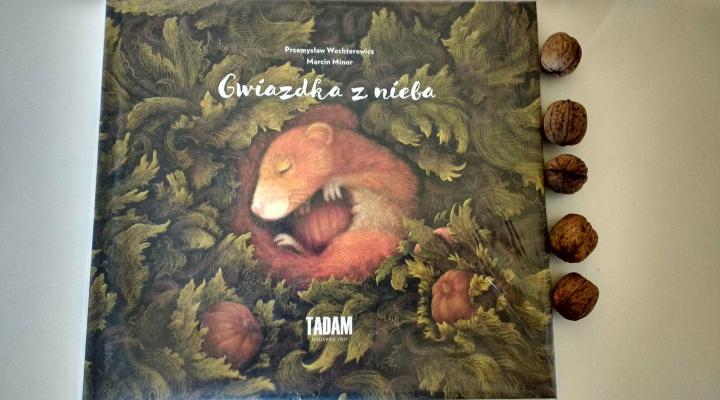 """Dzieciom na dobranoc – """"Gwiazdka z nieba"""", P. Wechterowicz, M. Minor; Wydawnictwo TADAM"""
