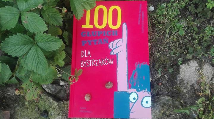 """Dzieciom – """"100 głupich pytań dla bystrzaków"""", S. Frattini; Nasza Księgarnia"""