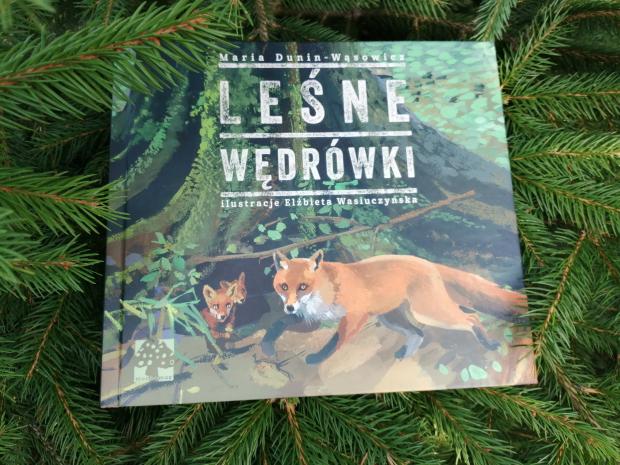 """Na spacer – """"Leśne wędrówki"""" Maria Dunin-Wąsowicz; Wyd. Muchomor"""